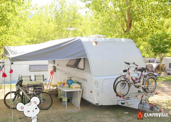 how to keep mice out of a camper